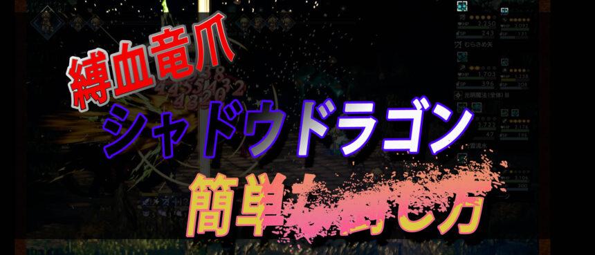 【大陸の覇者】シャドウドラゴン(黒)簡単な倒し方【追憶の塔】オクトラ